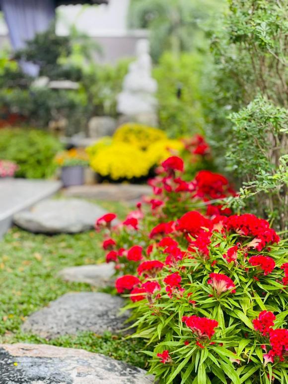 Nhật Kim Anh hóa nông dân chăm sóc vườn rau xanh mướt vào mùa dịch-16
