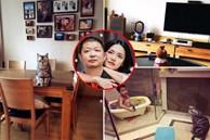 'Nữ hoàng Weibo' Diêu thần lộ biệt thự phong cách tối giản nhưng sang trọng và ấm cúng