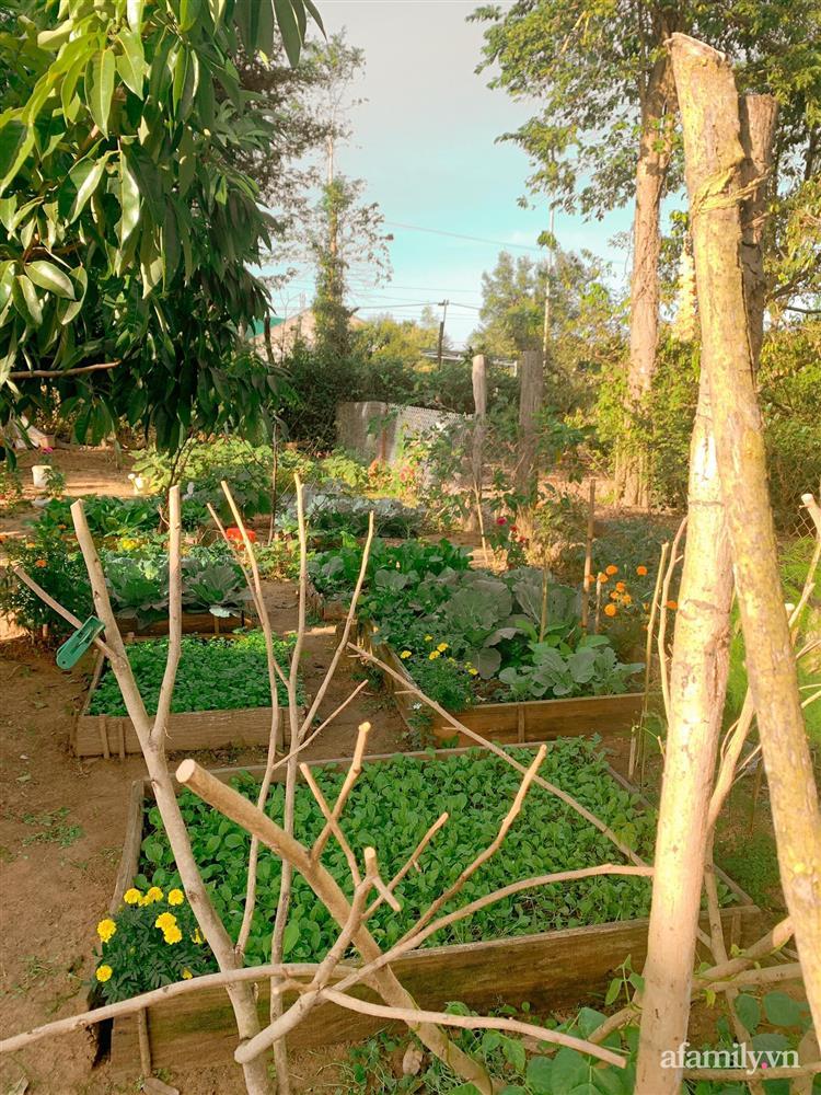 Cuộc sống yên bình bên khu vườn 2000m² sau hai năm bỏ phố về quê của cặp vợ chồng 9X-11