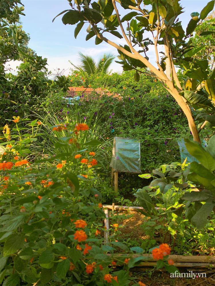 Cuộc sống yên bình bên khu vườn 2000m² sau hai năm bỏ phố về quê của cặp vợ chồng 9X-19