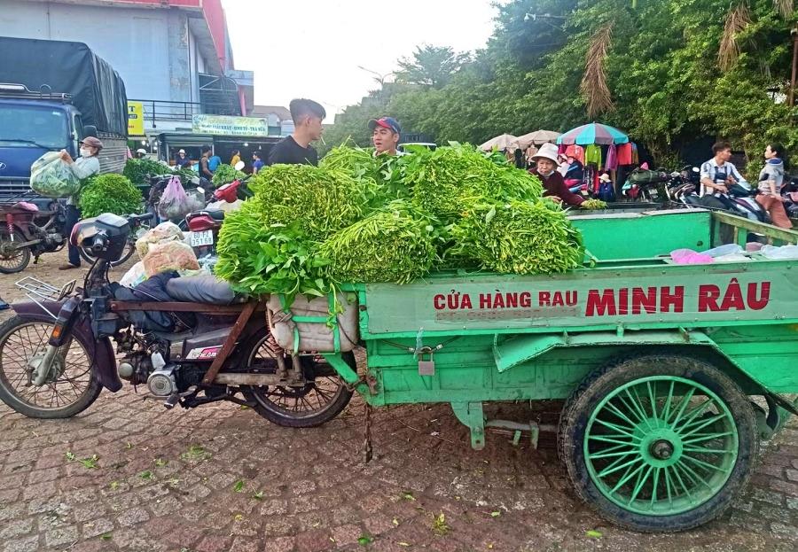 Bán rau đột biến miễn phí, Minh Râu Đồng Nai lại nhắn tin nức lòng người-6