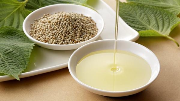 Loại rau siêu bổ dưỡng, khi ép thành dầu tốt hơn cả dầu đậu phộng nhưng không phải ai cũng biết cách tận dụng-1
