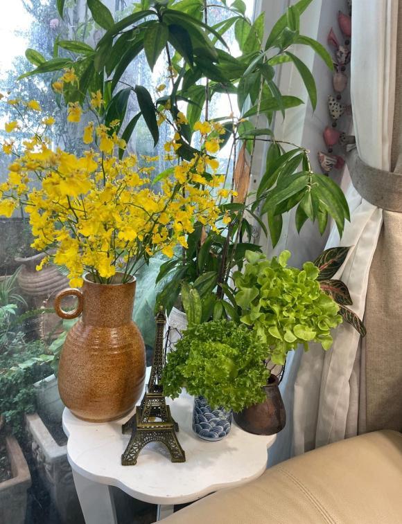 Mẹ đảm bật mí cách bảo quản rau xà lách tươi lâu vào mùa dịch-4
