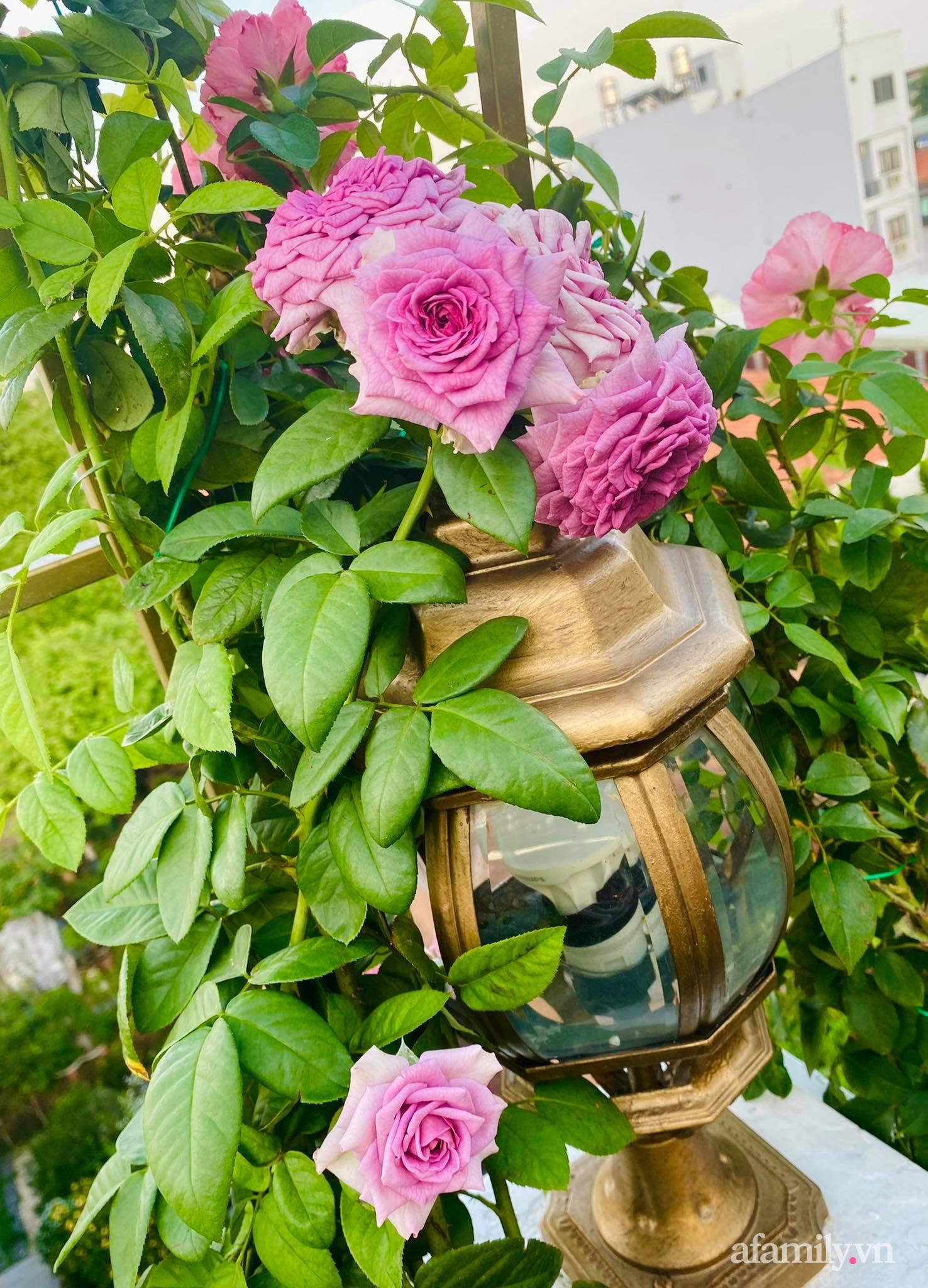 Sân thượng phủ kín hoa hồng và rau quả sạch ở Sài Gòn của Hoa hậu Janny Thủy Trần-19
