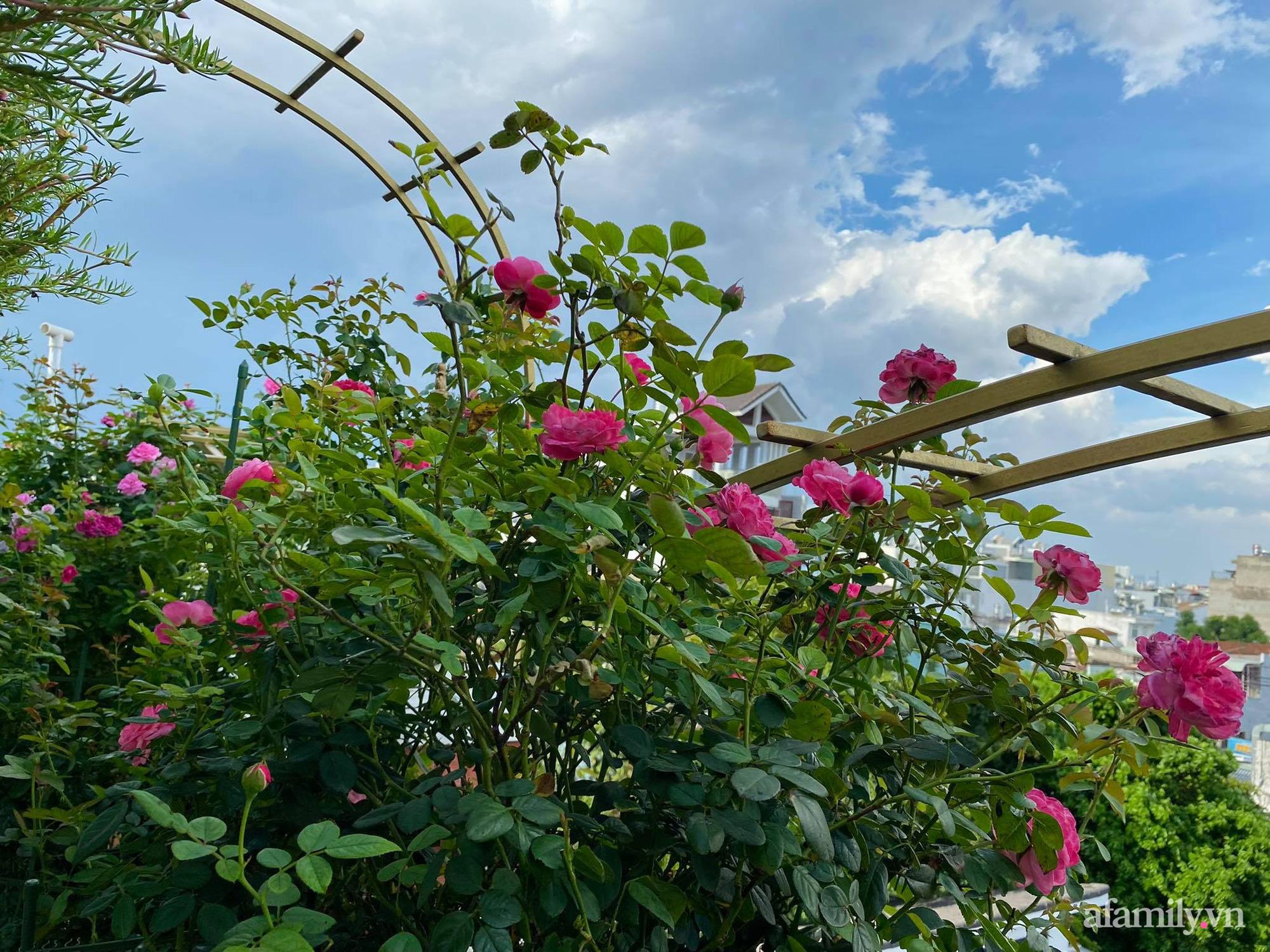 Sân thượng phủ kín hoa hồng và rau quả sạch ở Sài Gòn của Hoa hậu Janny Thủy Trần-16