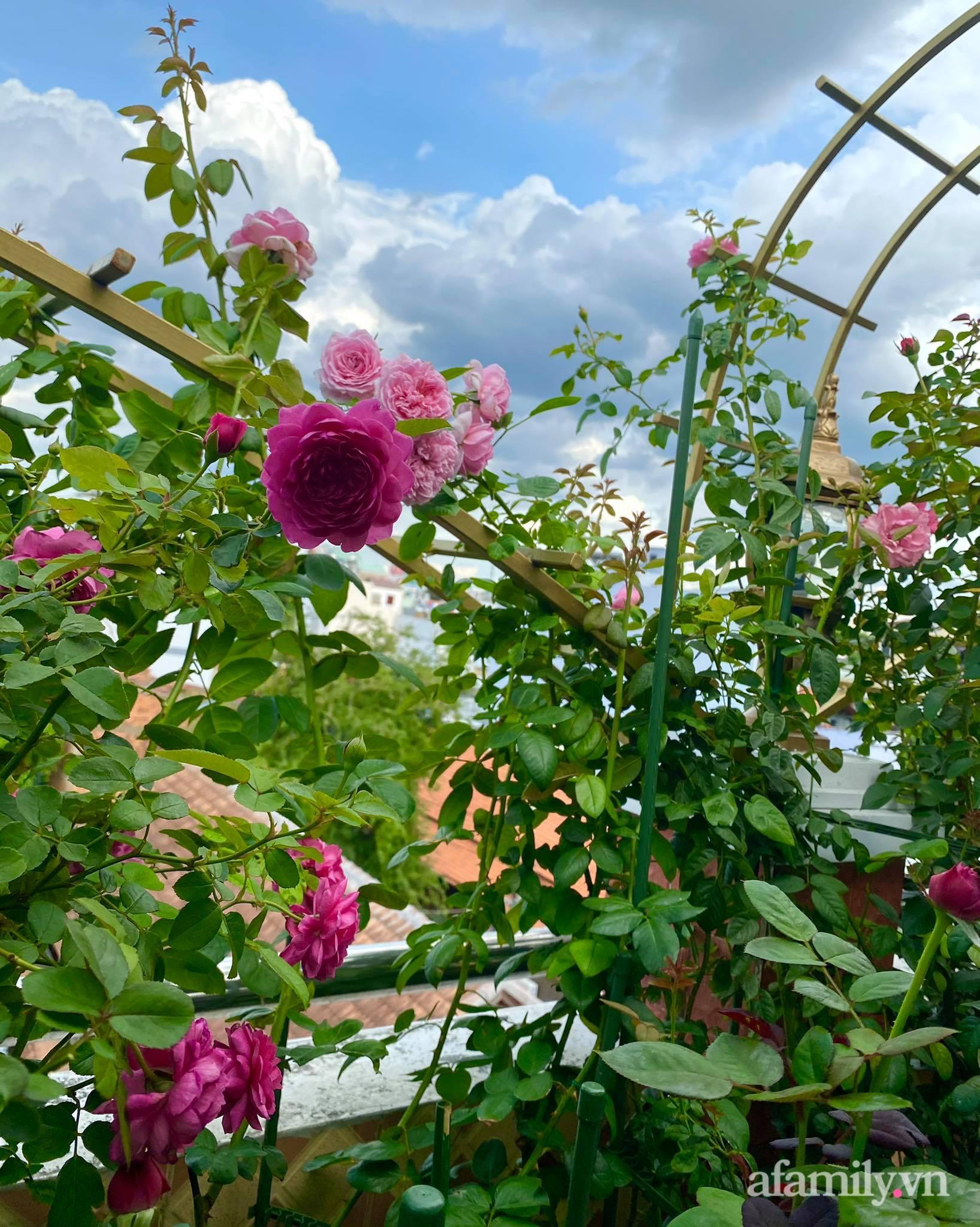 Sân thượng phủ kín hoa hồng và rau quả sạch ở Sài Gòn của Hoa hậu Janny Thủy Trần-20