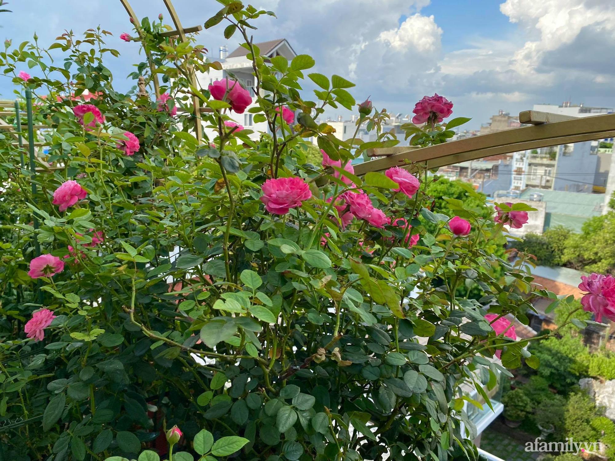 Sân thượng phủ kín hoa hồng và rau quả sạch ở Sài Gòn của Hoa hậu Janny Thủy Trần-5