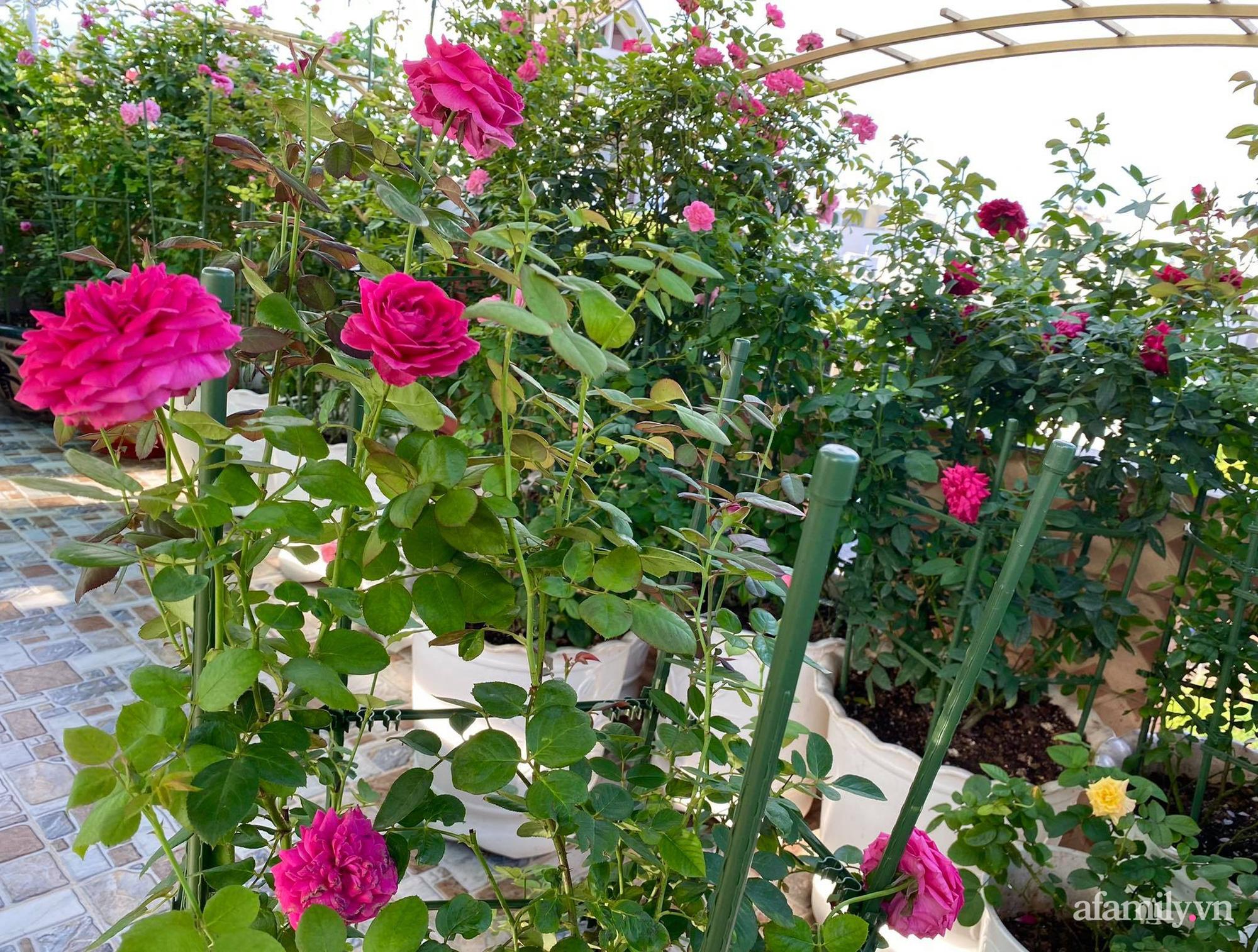 Sân thượng phủ kín hoa hồng và rau quả sạch ở Sài Gòn của Hoa hậu Janny Thủy Trần-7