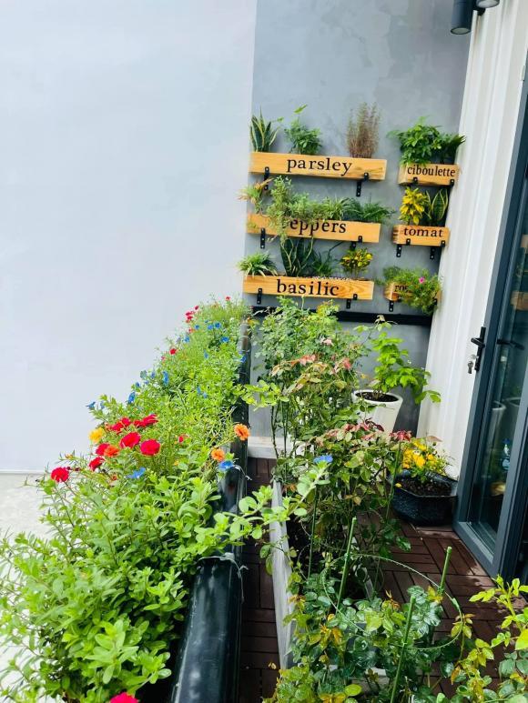 Ban công xanh mướt, ngập đầy hoa trong căn nhà mặt phố của vợ chồng diễn viên Hồ Bích Trâm-13