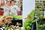 Ban công xanh mướt, ngập đầy hoa trong căn nhà mặt phố của vợ chồng diễn viên Hồ Bích Trâm