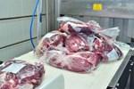 Campuchia phát hiện 3 container thịt trâu từ Ấn Độ có virus SARS-CoV-2