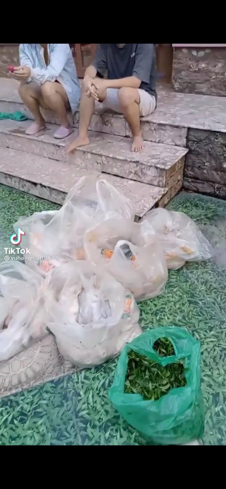 Giữa mùa dịch có một bà chủ chơi lớn tặng gạo miễn phí, cứ 3 ngày lại đều đặn phát 1 con gà và rau xanh cho người thuê trọ-1