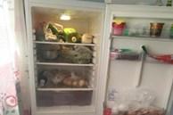 Đừng nhét túi ni lông vào tủ lạnh! Hãy nhìn cách làm này của những người thông minh, rất gọn và sạch sẽ