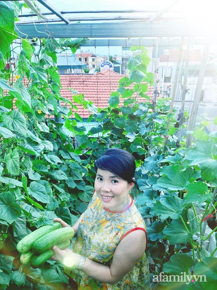 Cả năm không phải đi chợ mua rau quả nhờ làm vườn trên nóc nhà của mẹ đảm Hà Nội-7