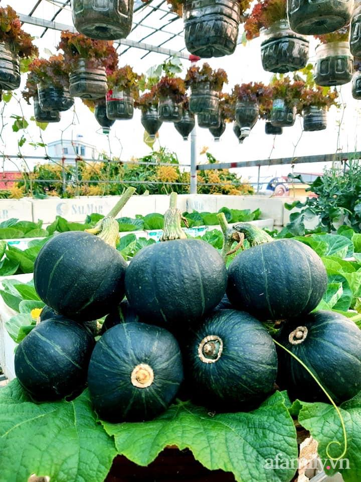 Cả năm không phải đi chợ mua rau quả nhờ làm vườn trên nóc nhà của mẹ đảm Hà Nội-13