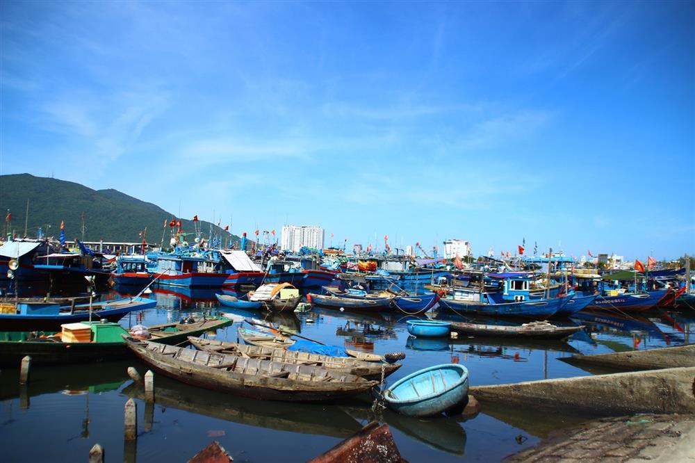 Tôm cá tăng giá nhưng chợ vắng khách mua-5