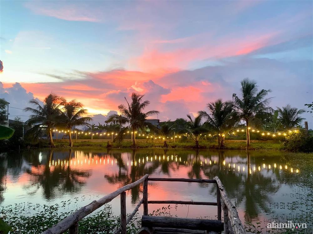 Cả gia đình may mắn có thể sống an yên giữa dịch nhờ ao cá, vườn cây xanh mát ở Bạc Liêu-2