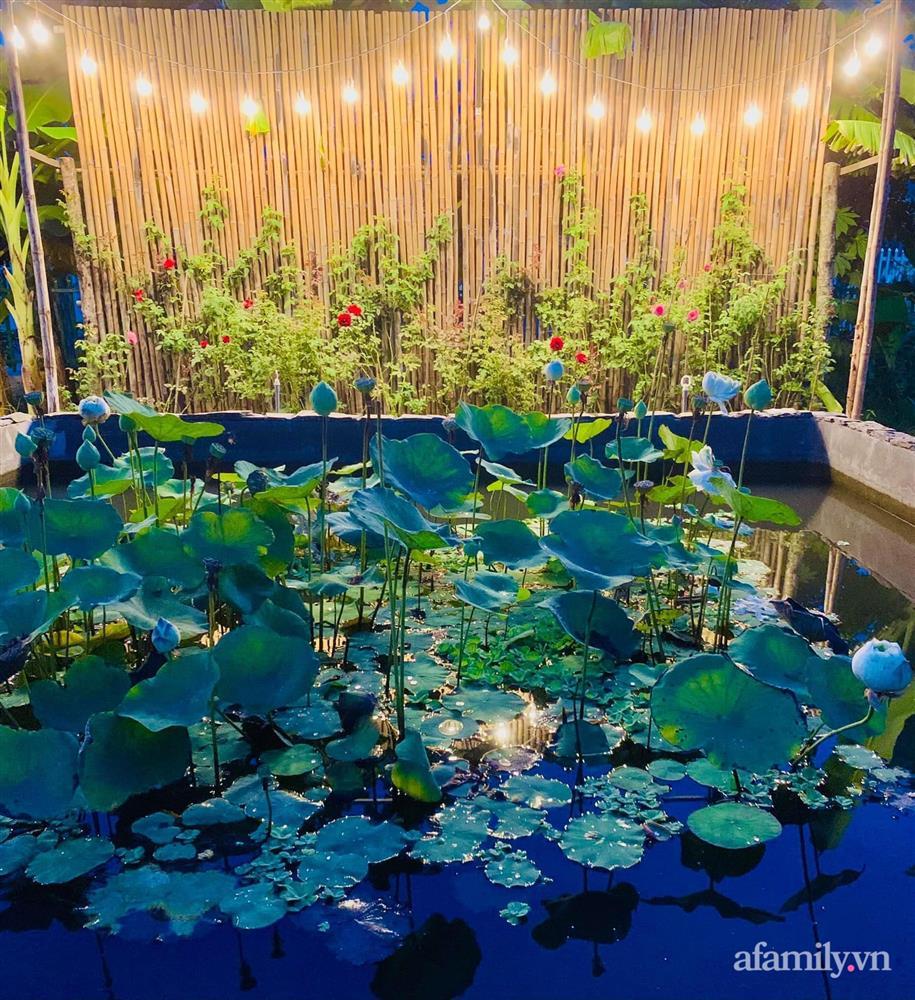 Cả gia đình may mắn có thể sống an yên giữa dịch nhờ ao cá, vườn cây xanh mát ở Bạc Liêu-4