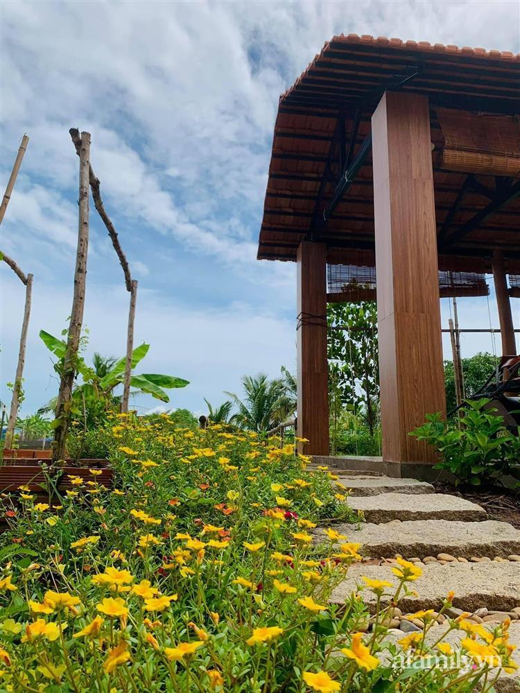 Cả gia đình may mắn có thể sống an yên giữa dịch nhờ ao cá, vườn cây xanh mát ở Bạc Liêu-5