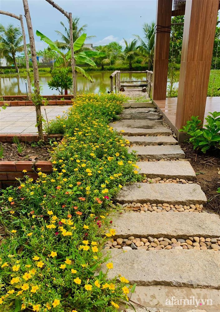 Cả gia đình may mắn có thể sống an yên giữa dịch nhờ ao cá, vườn cây xanh mát ở Bạc Liêu-6