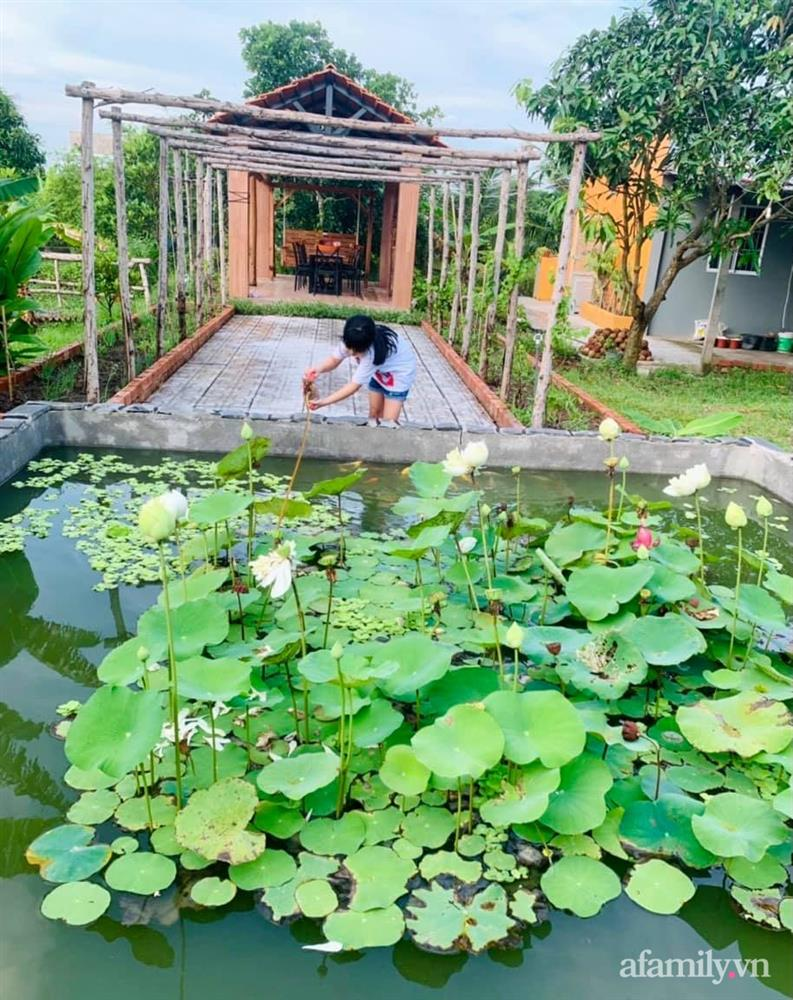 Cả gia đình may mắn có thể sống an yên giữa dịch nhờ ao cá, vườn cây xanh mát ở Bạc Liêu-27