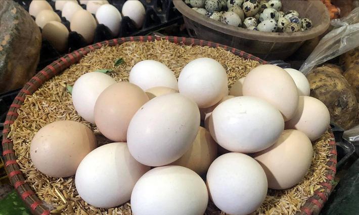 Giải mã hiện tượng trứng gà tăng giá kỷ lục, thương lái tranh nhau mua giữa tâm dịch-1