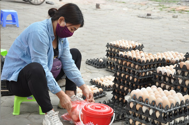 Giải mã hiện tượng trứng gà tăng giá kỷ lục, thương lái tranh nhau mua giữa tâm dịch-3