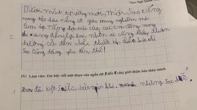 Được yêu cầu viết đoạn văn giới thiệu bản thân, học sinh lớp 1 ghi vỏn vẹn 4 từ mà khiến ai nấy cười vỡ bụng-1
