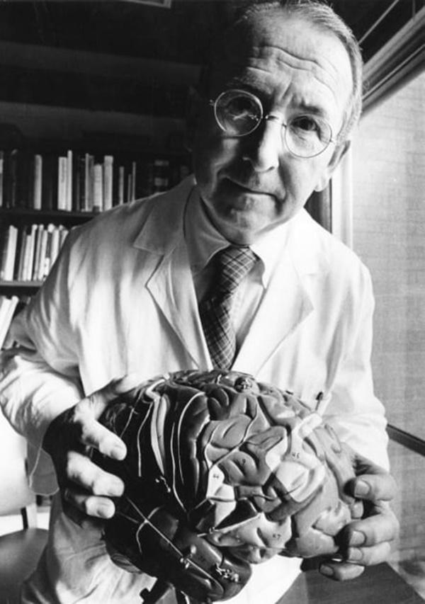 3 cấp độ não người là giả thuyết sai lầm-3