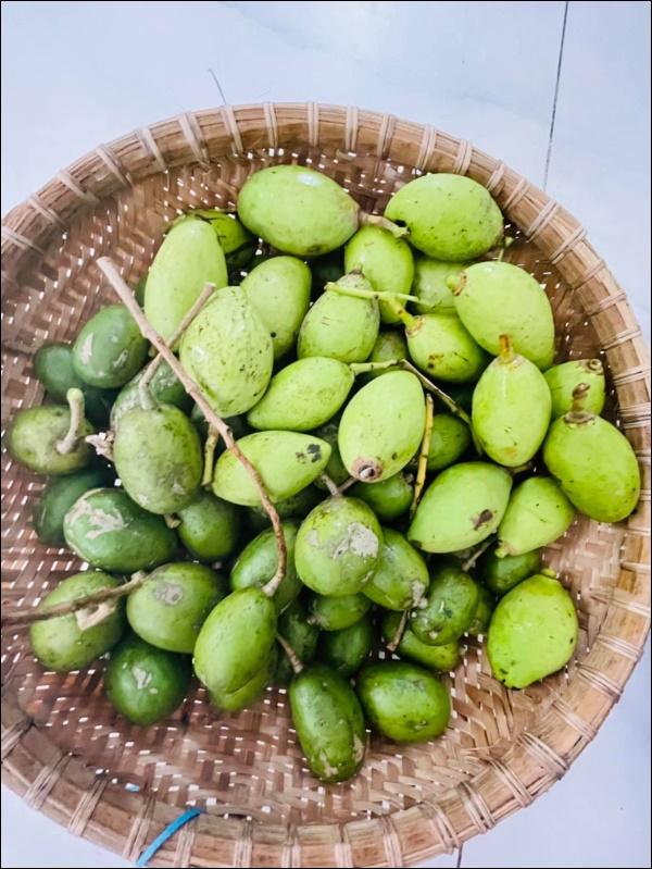 Vườn rau mướt mắttrong biệt thự củaThân Thúy Hà gì cũng có, ngày dịch sẵn thực phẩm xanh tại gia ai cũng thèm-9