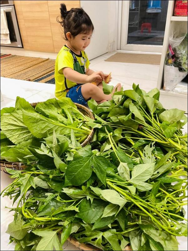 Vườn rau mướt mắttrong biệt thự củaThân Thúy Hà gì cũng có, ngày dịch sẵn thực phẩm xanh tại gia ai cũng thèm-16