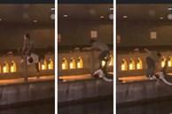 Phẫn nộ clip nam thanh niên thản nhiên livestream cảnh 1 nạn nhân bị đẩy ngã xuống sông ở Nhật Bản: 'Đúng rồi, đạp nó xuống'