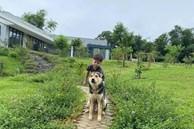 Căn nhà vườn đẹp an yên, tĩnh lặng ở ngoại thành Hà Nội
