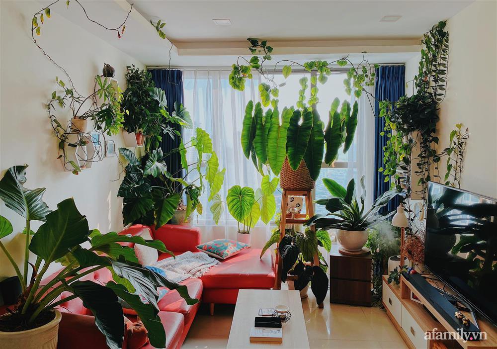 Căn hộ trên tầng cao xanh mát ấn tượng với đủ loại cây nhiệt đới của chàng trai Sài Gòn-2