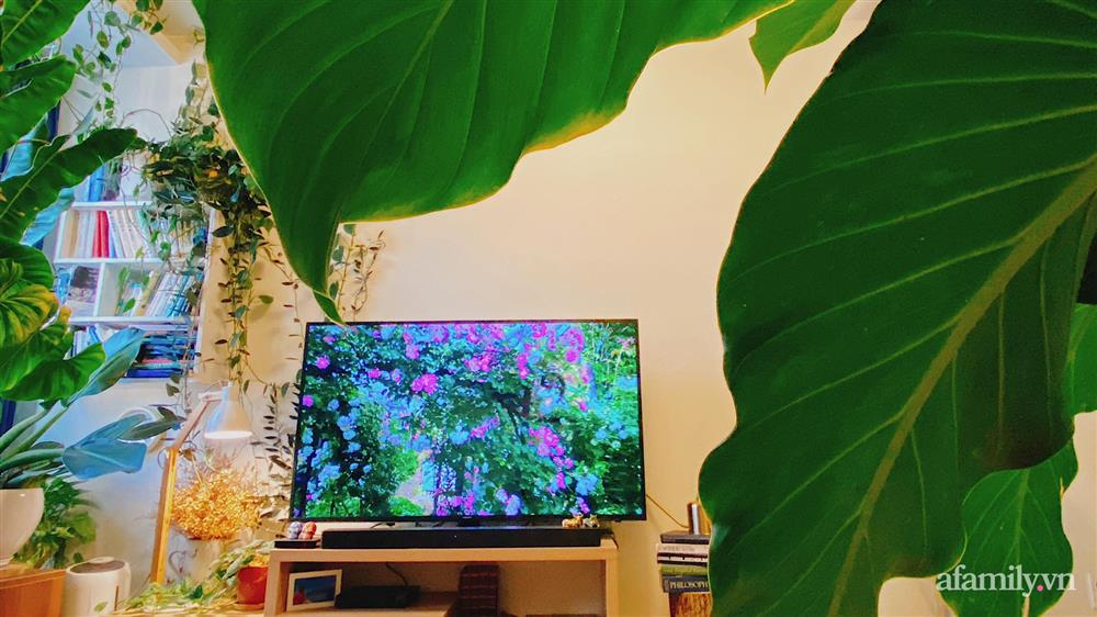 Căn hộ trên tầng cao xanh mát ấn tượng với đủ loại cây nhiệt đới của chàng trai Sài Gòn-5