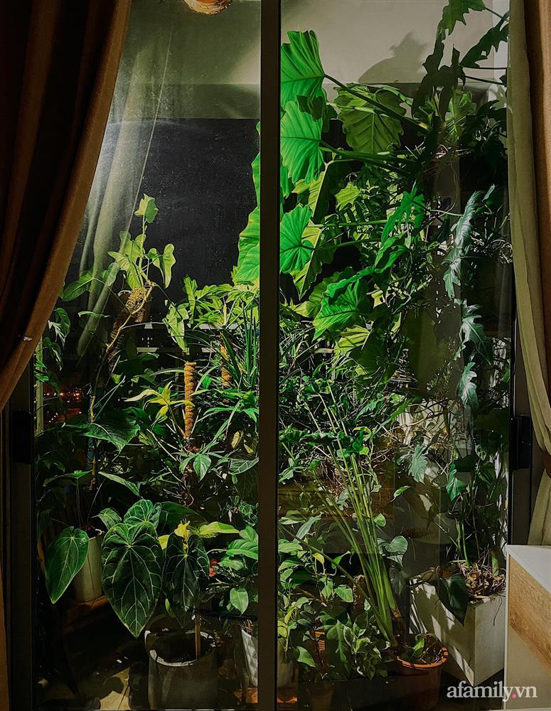 Căn hộ trên tầng cao xanh mát ấn tượng với đủ loại cây nhiệt đới của chàng trai Sài Gòn-10