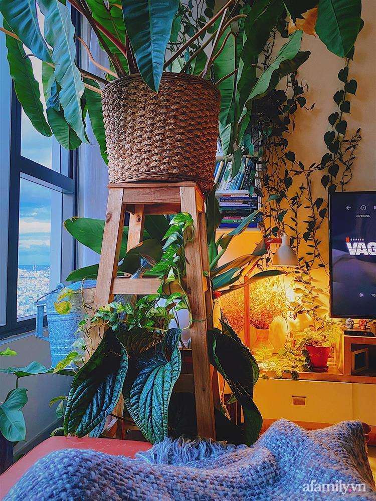 Căn hộ trên tầng cao xanh mát ấn tượng với đủ loại cây nhiệt đới của chàng trai Sài Gòn-8