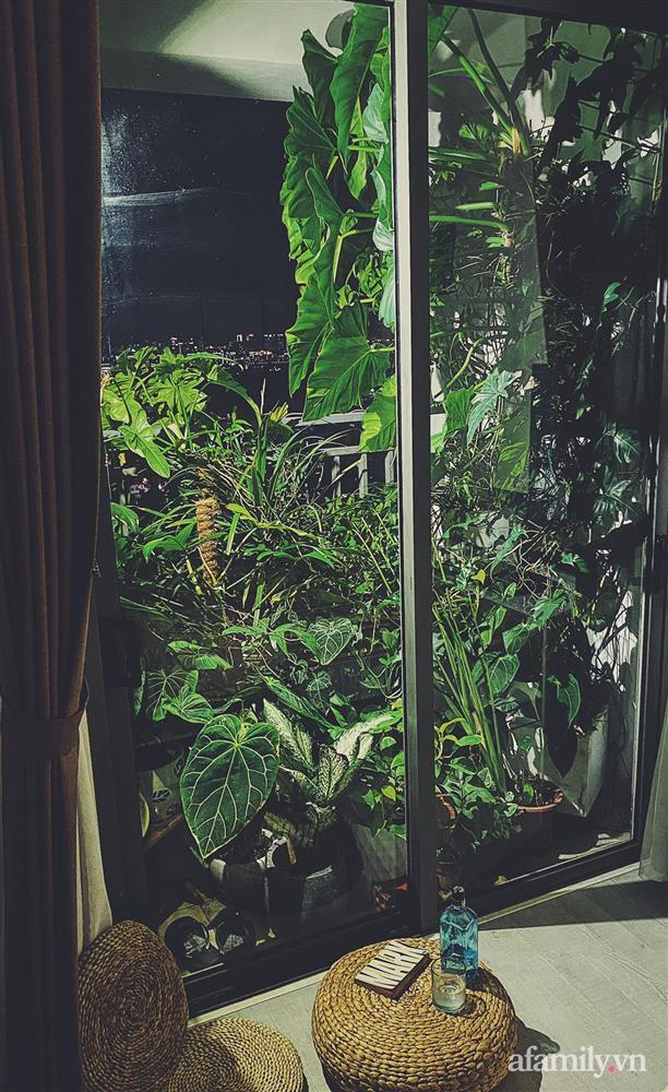 Căn hộ trên tầng cao xanh mát ấn tượng với đủ loại cây nhiệt đới của chàng trai Sài Gòn-15