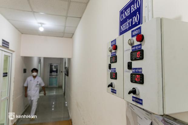 Bên trong kho máu đang cạn kiệt của Trung tâm Truyền máu BV Chợ Rẫy: Chúng ta có thể chờ dịch bệnh qua đi nhưng người bệnh không thể chờ máu!-7