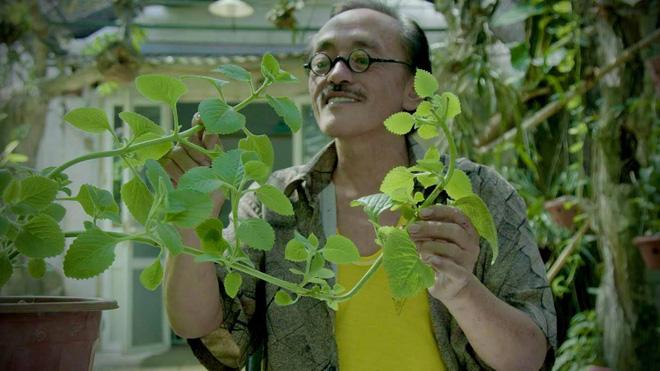 Thăm khu vườn đầy ắp cây trái ở ngoại ô của NS Giang Còi, gần 1 tháng trước khi mất lão nông vẫn say sưa trồng chanh-2
