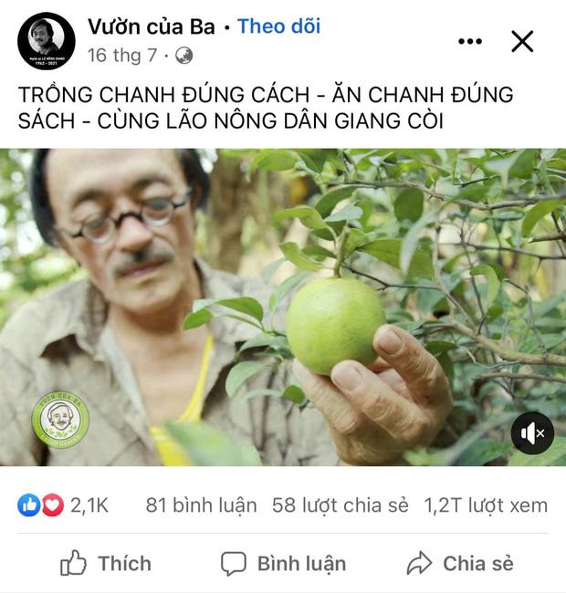Thăm khu vườn đầy ắp cây trái ở ngoại ô của NS Giang Còi, gần 1 tháng trước khi mất lão nông vẫn say sưa trồng chanh-4