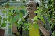 Thăm khu vườn đầy ắp cây trái ở ngoại ô của NS Giang Còi, gần 1 tháng trước khi mất 'lão nông' vẫn say sưa trồng chanh