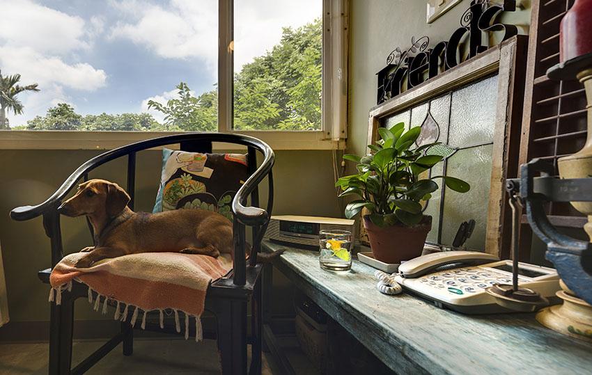 Cải tạo căn nhà tập thể cũ thành không gian nhỏ xinh ấn tượng đến bất ngờ-18
