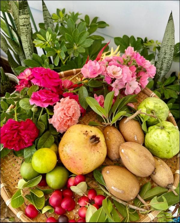 Khu vườn trongbiệt thự 21 tỷ của MCQuyềnLinh mùa dịch gìcũng có: Rau xanh, hoa tươi, trái cây đều xum xuê-1