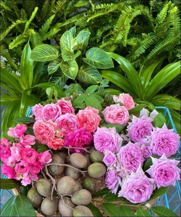 Khu vườn trongbiệt thự 21 tỷ của MCQuyềnLinh mùa dịch gìcũng có: Rau xanh, hoa tươi, trái cây đều xum xuê-2