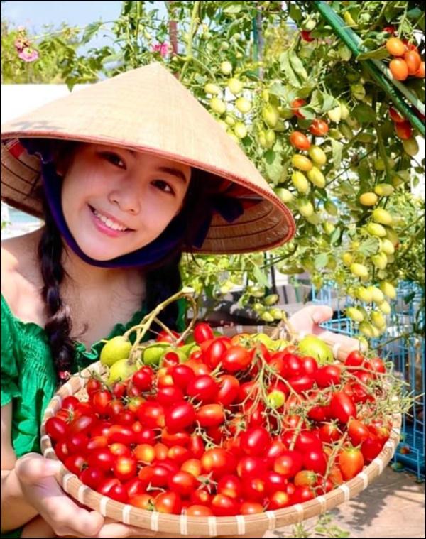 Khu vườn trongbiệt thự 21 tỷ của MCQuyềnLinh mùa dịch gìcũng có: Rau xanh, hoa tươi, trái cây đều xum xuê-14