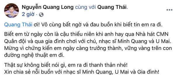 Tin buồn: Nghệ sĩ Quang Thái - con trai nhạc sĩ Minh Quang qua đời-2