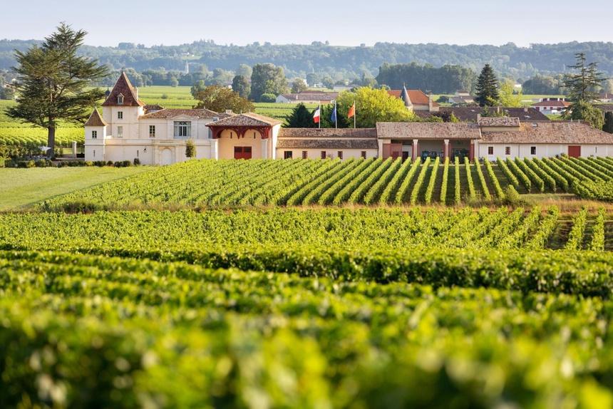 Ở Pháp nàng én nhỏ Triệu Vy sở hữu khối bất động sản khổng lồ gồm dinh thự cổ 141 tỷ và vườn nho 7 hecta-2
