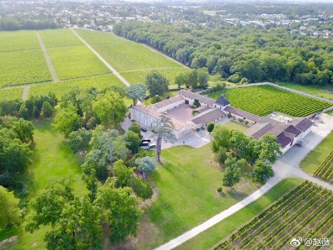 Ở Pháp nàng én nhỏ Triệu Vy sở hữu khối bất động sản khổng lồ gồm dinh thự cổ 141 tỷ và vườn nho 7 hecta-4