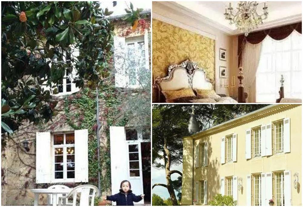 Ở Pháp nàng én nhỏ Triệu Vy sở hữu khối bất động sản khổng lồ gồm dinh thự cổ 141 tỷ và vườn nho 7 hecta-8